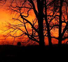 Spectacular Sunrise by Susan S. Kline