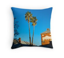 Old Federal Brewery Throw Pillow