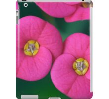 Euphorbia milii (crown of thorns, Christ plant, Christ thorn) iPad Case/Skin