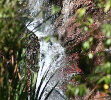 Wangi Falls by Basa