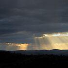 golden rays of light by Joel Wigley