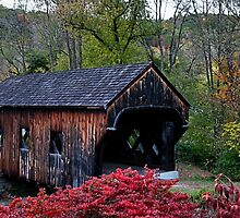 Baltimore Covered Bridge by DJ Florek
