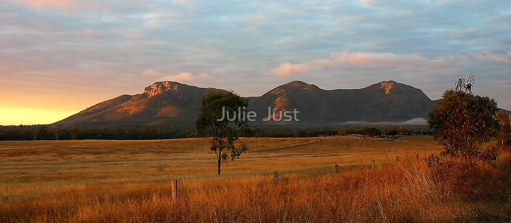 Mt Walsh Sunrise by Julie Just