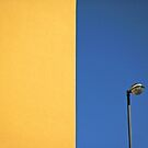 Half yellow Half blue by Silvia Ganora