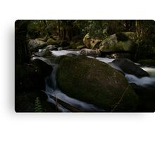 Noojee Falls National Park Canvas Print