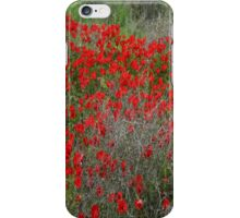 Beautiful Red Wild Anemone Flowers In A Spring Field  iPhone Case/Skin