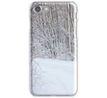 Winter's Spell I iPhone Case/Skin