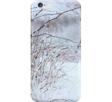 Winter's Spell III iPhone Case/Skin