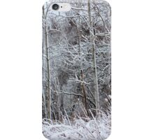 Winter's Spell IV iPhone Case/Skin