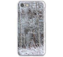 Winter's Spell IV iPhone Case/Skin