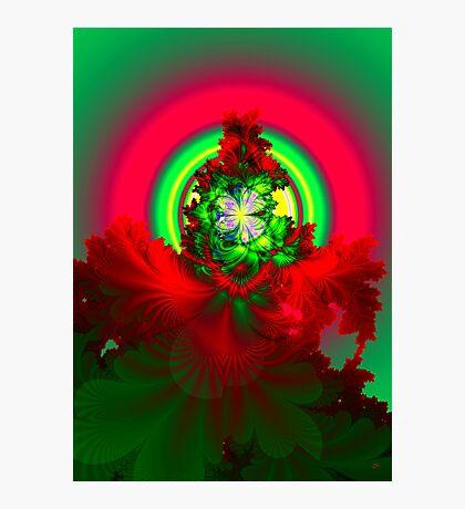 Nature's Glow Photographic Print