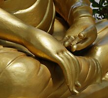 Buddha Hands by Dave Lloyd