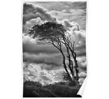 Wind & Wuthering Poster