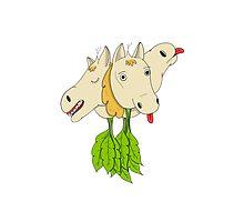 Horseradish by Chelsea Delgadillo