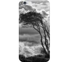 Wind & Wuthering iPhone Case/Skin
