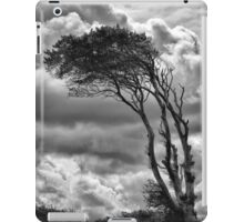 Wind & Wuthering iPad Case/Skin