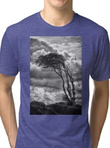 Wind & Wuthering Tri-blend T-Shirt