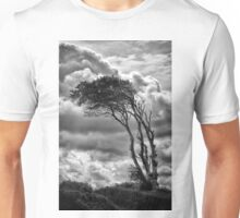 Wind & Wuthering Unisex T-Shirt