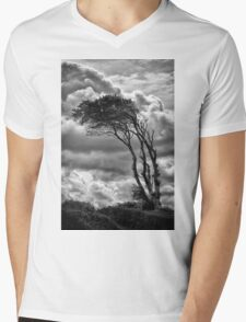 Wind & Wuthering Mens V-Neck T-Shirt