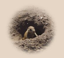 Prairie Dogs V by shane22