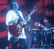 Widespread Panic by kaylarenee