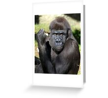 What the?? Greeting Card