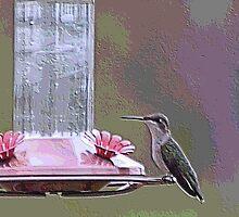 humming bird blocks detailed by deldodds