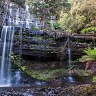 Russell Falls - Tasmania by Paul Campbell  Photography