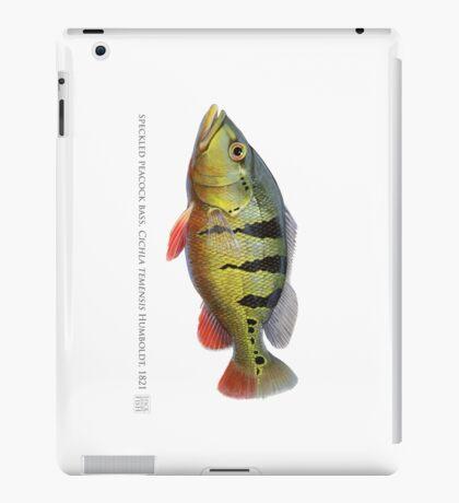 Peacock Bass - Tucunaré (Cichla temensis) iPad Case/Skin