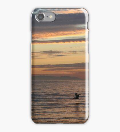 Fish Diving iPhone Case/Skin
