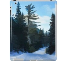 Winter Mood Impressions - Snowy Road in Algonquin iPad Case/Skin