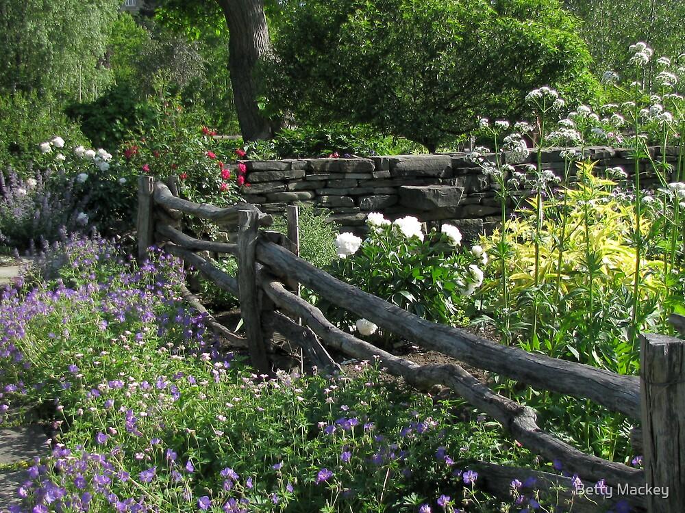 Robison Herb Garden by Betty Mackey