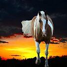 Twilight Friend by Al Bourassa