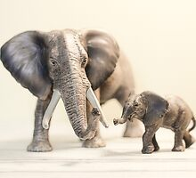 Mama and Baby Elephant by Debbra Obertanec