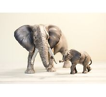 Mama and Baby Elephant Photographic Print