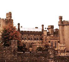 Arundel Castle by Mishka Góra