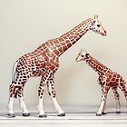 Giraffe Love by Debbra Obertanec