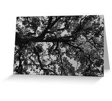 Untitled Tree in grey Greeting Card