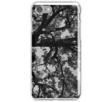 Untitled Tree in grey iPhone Case/Skin