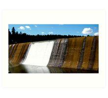 Evergreen Dam Art Print