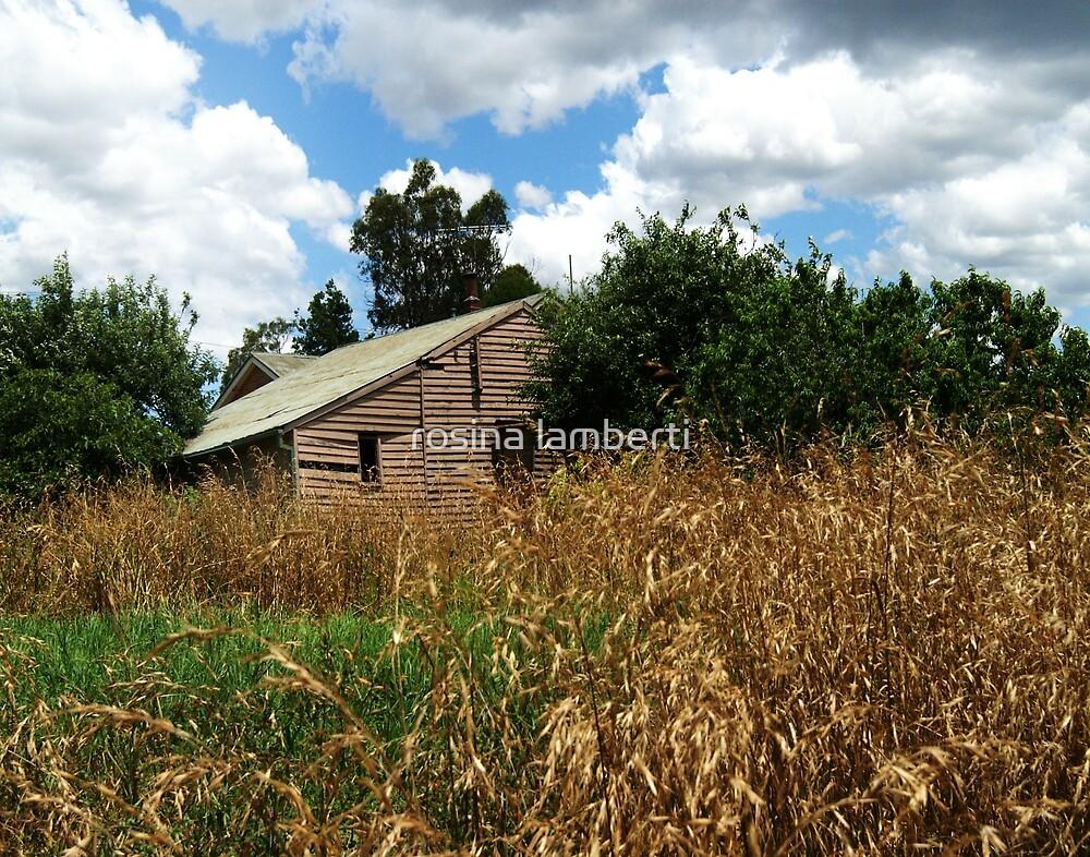 Bulleen farm shed,Bulleen road, Bulleen.Victoria by Rosina  Lamberti