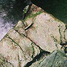 Rocky Creek by Chris Cohen