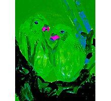 Green Parrots - Rhian B. Photographic Print