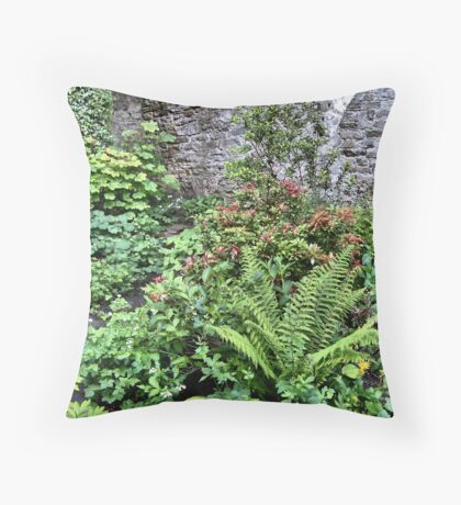 Inside the old chapel Throw Pillow
