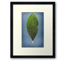 Dew Laden Leaf Framed Print