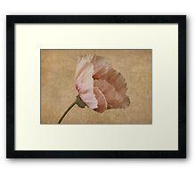 Parchment Framed Print