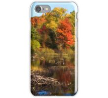 Autumn Beaver Pond Reflections iPhone Case/Skin