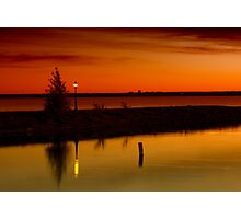 The Tree and the Lamp Post at Sunset - Aylmer Marina Photographic Print