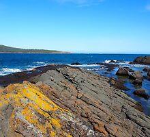 Coastal Rocks by Chelsea McCann