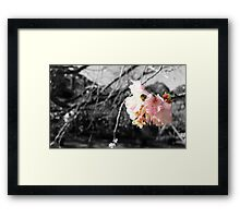Whispering Sweet Nothings Framed Print